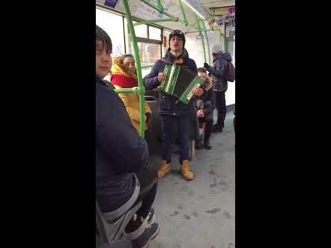 видео: Тайсон поет в автобусе. Тюмень. Кукушка Виктора Цоя и despacito