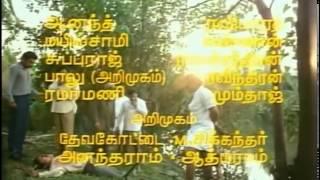 Такие разные братья (Индия 1989) на русском языке