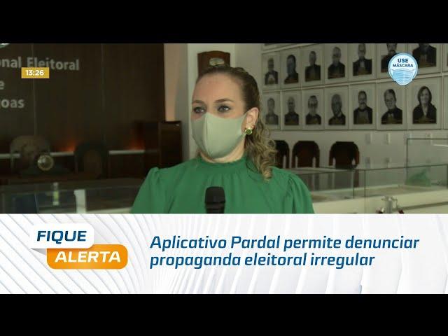 Eleições 2020: Aplicativo Pardal permite denunciar propaganda eleitoral irregular
