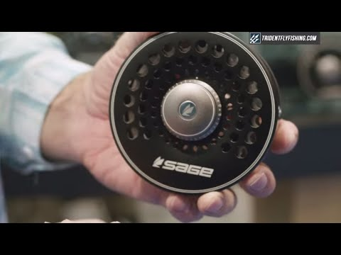 Sage Spey Fly Reel | Insider Review