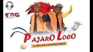PAJARO LOCO | El Genio Atr & Gutokio Famous (Oficial Music)