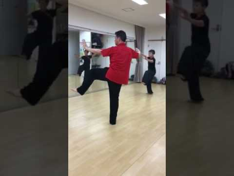 楊名時太極拳と制定拳24式比較動畫(転身ドンジャオから) - YouTube