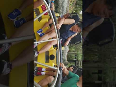 Congo river rapids at Busch gardens
