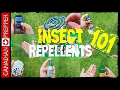 Homemade Nontoxic Mosquito Repellents 101