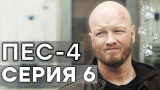 Сериал ПЕС - 4 сезон - 6 серия - ВСЕ СЕРИИ смотреть онлайн | СЕРИАЛЫ ICTV