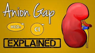 Anion Gap EXPLAINED
