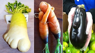 Unusually Shaped Fruits and Vegetables #1