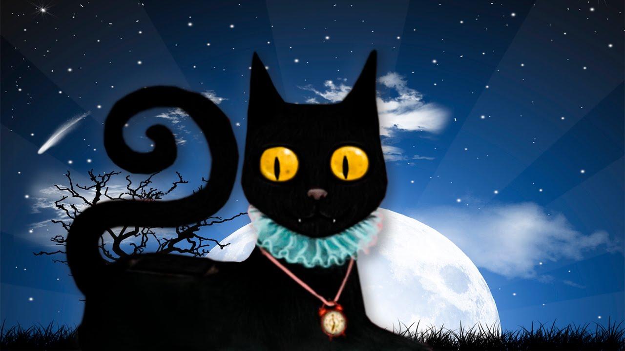 зашла картинка кота полночь осенью здесь