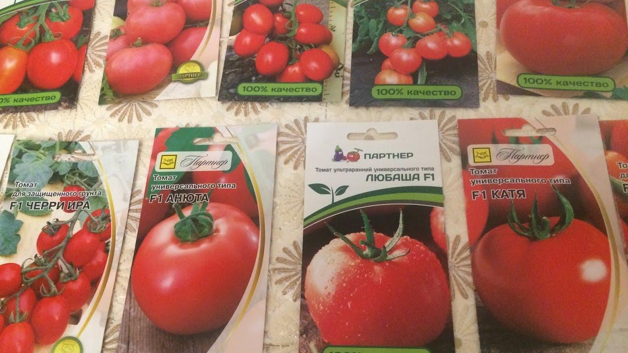 14 фев 2016. В европу не пускают — там строгий запрет на гмо. Один раз используя семена гмо, на другое переключиться уже будет достаточно.