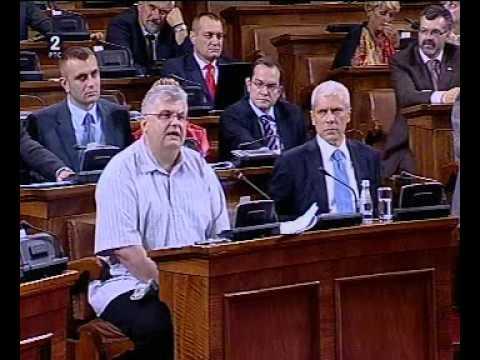 Govor Nenada Čanka u Skupštini Srbije povodom Deklaracije o Kosovu i Metohiji - RTS2, 30.07.2011.