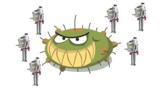 Pour tout savoir sur la grippe
