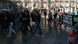 Manifestación en Logroño convocada por NAC en favor de los perros de caza