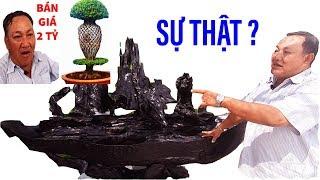 Sự thật về ông chủ cây kiểng độc đáo nhất VN đang hô bán 2 tỷ II ĐỘC LẠ BÌNH DƯƠNG