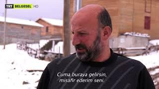 Sürünün Zor Yolculuğu - TRT Belgesel