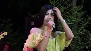 Gambar cover Kemarin Ayunda Cicipanda New Kingstar Live Maitan
