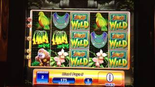 $1 Jungle Wild Slot Bonus