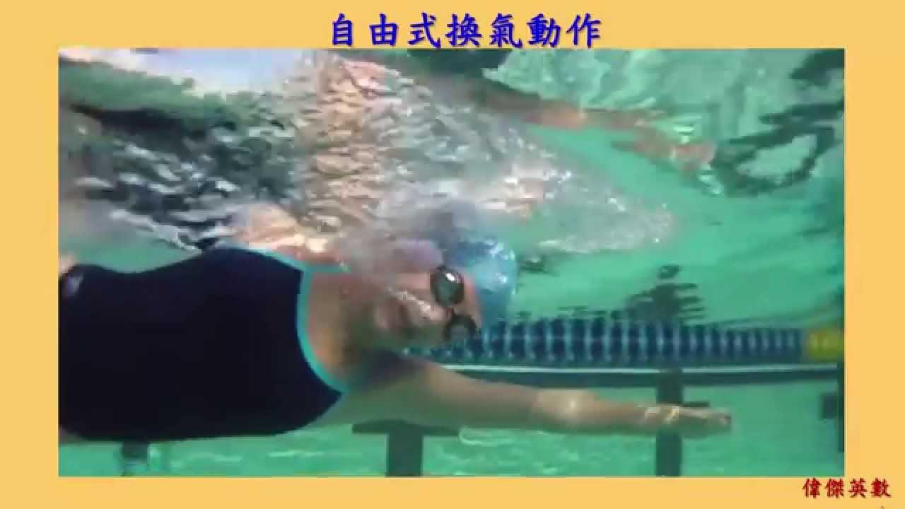 游泳教學 - 自由式 (Freestyle Swimming) - YouTube