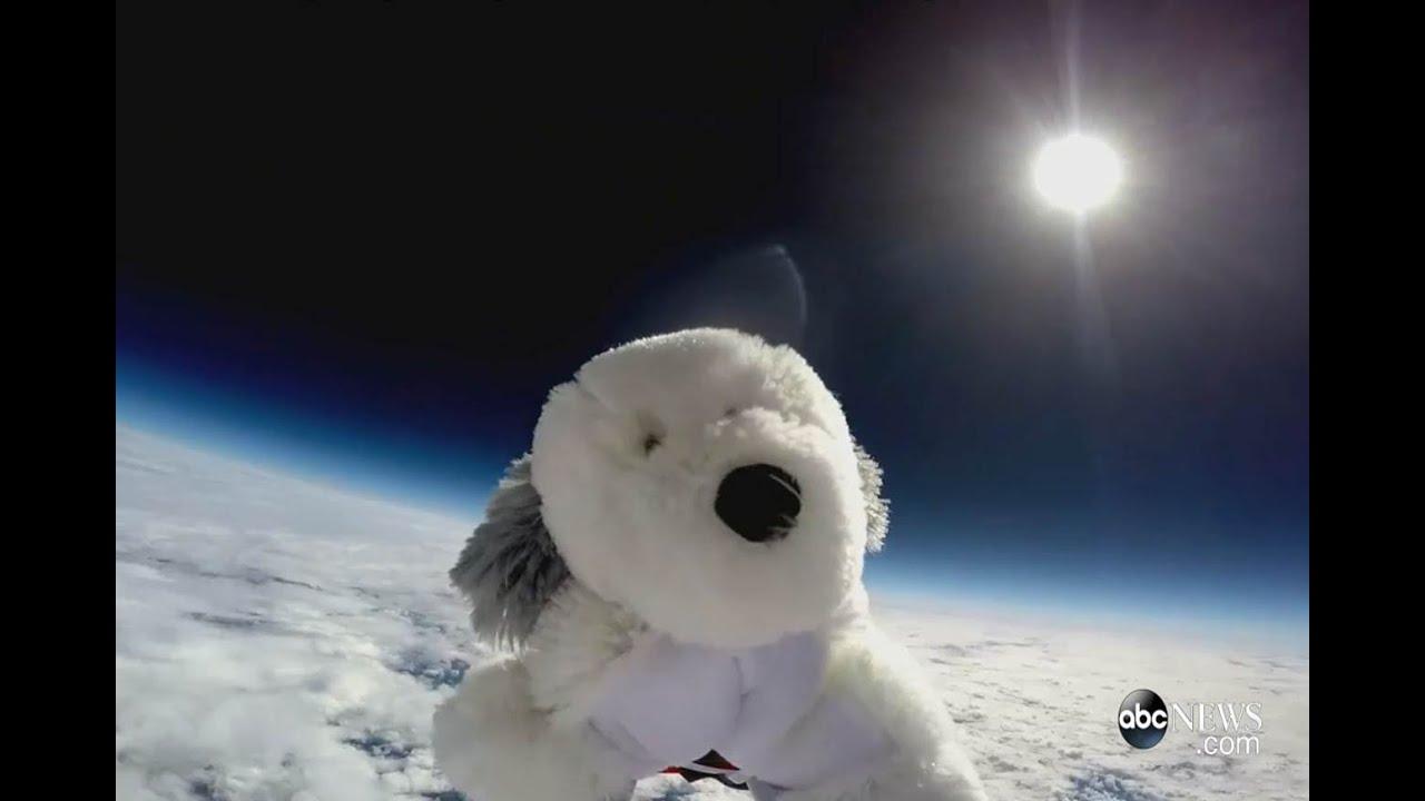 Stuffed Animal Journeys To Earth's Stratosphere