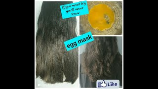 Egg mask for hair Get smooth shiny healthy and volume added hair