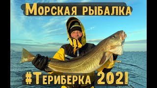 Морская рыбалка в Териберке 2021 Готовим треску в казане на костре Териберка 2021 треска