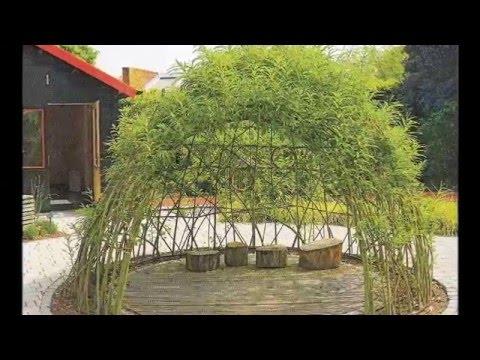Садовые живые беседки из ивы