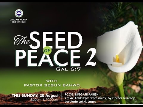 Dew of Heaven Service - The Seed of Peace Part 2 (Gal. 6:7)- 20th August, 2017