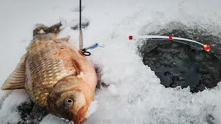 В поисках КАРАСЯ на прекрасных зимних просторах реки / Зимний карась / ловля карася зимой