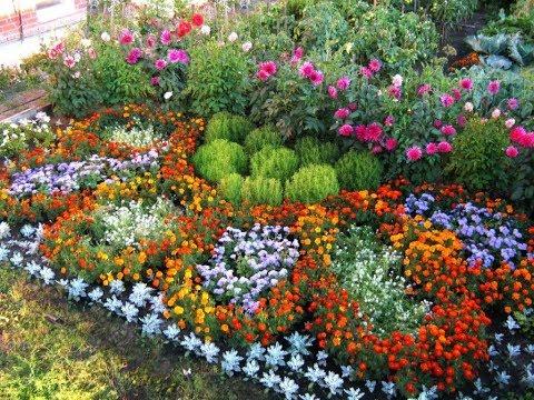 Как украсить цветами дачный участок