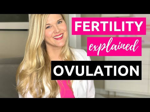 Utilizing a Fertility Calendar When Trying to get pregnant