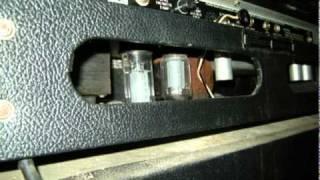 Chocolate Lab Guitar Pedal Thru Tube Amp
