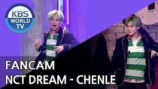 [FOCUSED] NCT Dream's CHENLE - We Go Up [Music Bank / 2018.08.31]