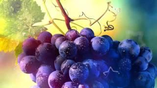 ПОЛЬЗА ВИНОГРАДА | синий, темный, зеленый виноград польза