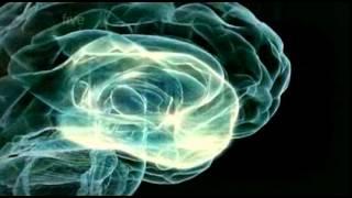 My Strange Brain Part 2