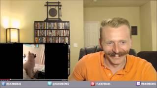 Epic Pomeranian Puppy Sneeze (reaction & Review)