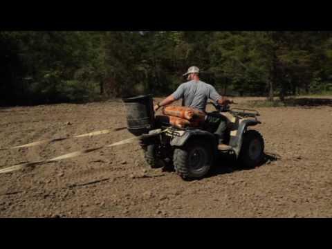 Buck Busters Seed Company