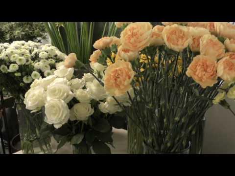 Movant Floristutbildning