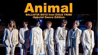 BALLISTIK BOYZ from EXILE TRIBE / 「Animal」Music Video -Special Dance Edition-