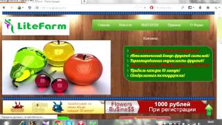 Зарабатывай по 1000 рублей в день, в онлайн игре Golden Birds !