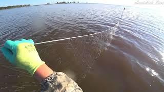 ЧТО ЛОВЯТ СЕТЯМИ В СИБИРИ... Рыбалка как работа! Ловля сетями вместе с промысловиками! Осень 2020.