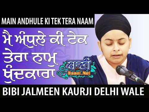 Akj-Bibi-Jalmeen-Kaur-Ji-Delhi-Wale-Anand-Vihar-2019
