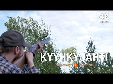 Kyyhkyn Metsästys 2019 | Dragonfly Erävideot