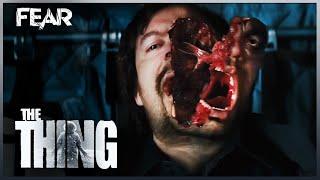 Mayday, Mayday | The Thing (2011)