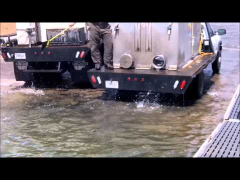 1000's of Fish! Crazy Underwater trout stocking video!!!.wmv
