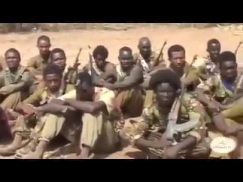 Waraana Adda Bilisummaa Oromoo Olf