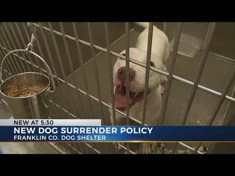 New policy has Franklin County Dog Shelter taking dogs by appointment only