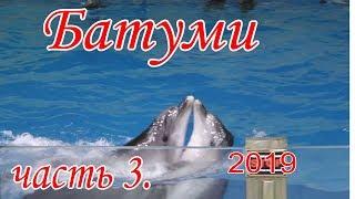 БАТУМИ 2019.часть 3. ШОУ ДЕЛЬФИНОВ.