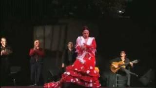 Alegrias - Eli parrilla
