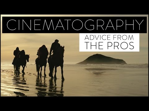 Cinematography Advice From Industry Pros