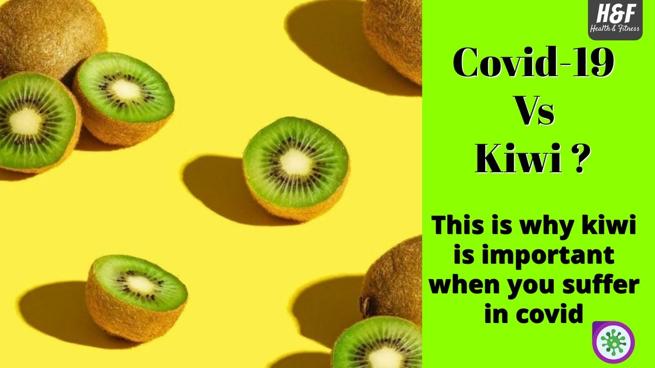 Download Why Kiwi is important to human body?   Kiwi after covid-19   Vitamin c   Cure for insomnia