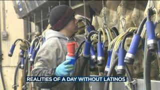'Day without Latinos' on Dane County dairy farm